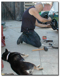 Wasabi supervises Skid